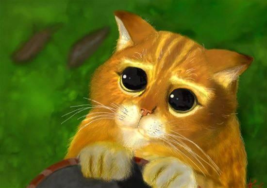 Картинки анимация кот шрек